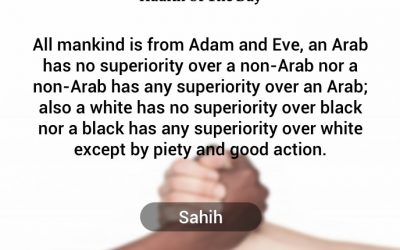 Hadith – Equality, Anti-Racism